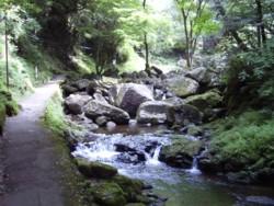 2008年8月18日の赤目滝 2