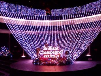2008年12月23日、アークヒルズのイルミネーション