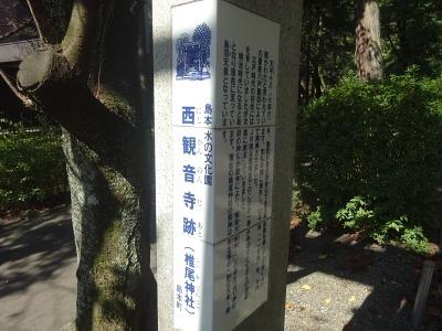 sayama18 - コピー.jpg