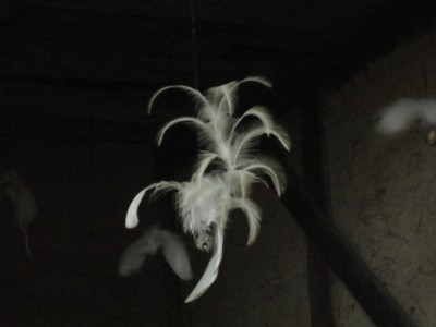 男木島にて2010年10月28日 羽のオブジェ3
