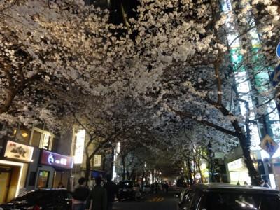 2014年3月29日 東京駅から日本橋へ