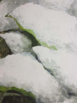 立原保 親雪I 2