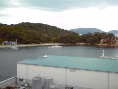2010年10月29日 直島 向島プロジェクト1
