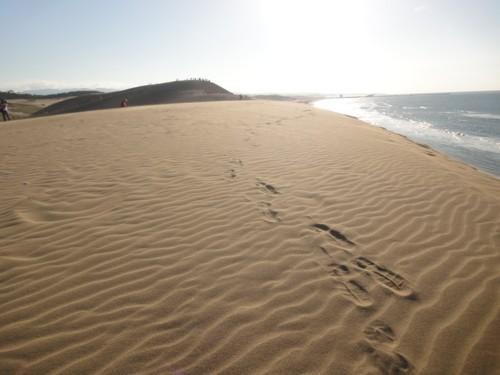 2011年9月24日 鳥取砂丘4